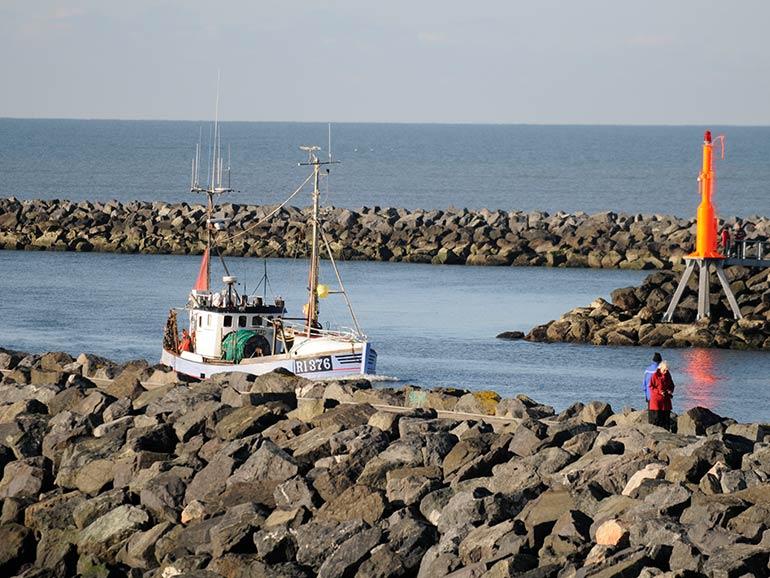 Aktiviteter - kutterture på vesterhavet