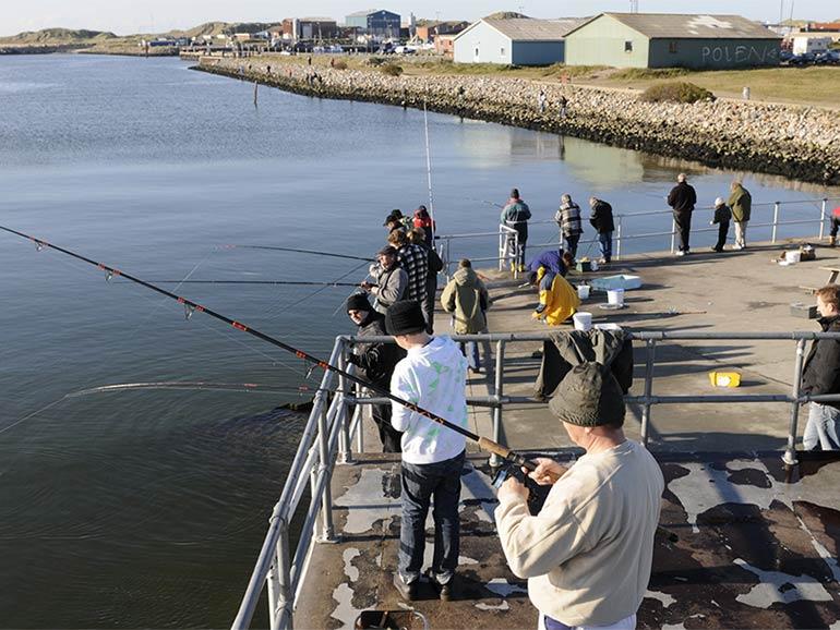 Aktiviteter - lystfiskeri
